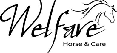 Welfare Horse & Care