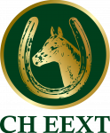CHEEXT-logo