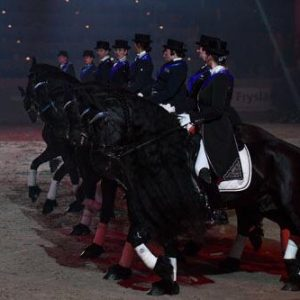Het Friesian Subtop Team